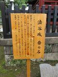 20110619029.jpg