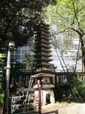 20121116010.JPG
