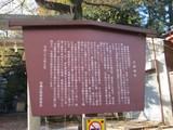 20121120008.JPG
