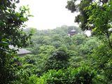 Chinzan6902.jpg