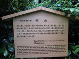 Chinzan6922.jpg